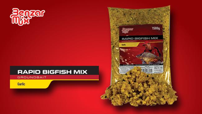 BM Rapid Bigfish Mix